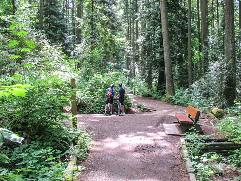 Ciclistas fazendo trilhas no Pacific Spirit Regional Park em Vancouver