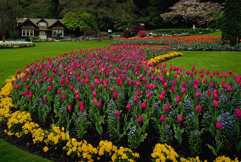 Jardins do Stanley Park em Vancouver