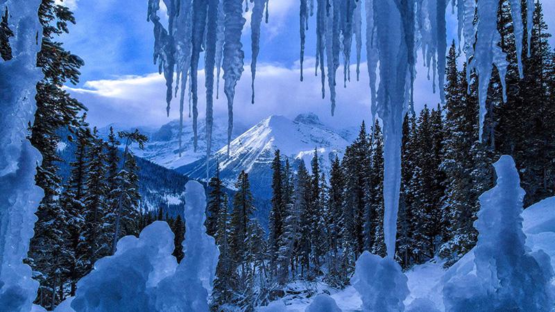 Inverno no Parque Nacional em Jasper