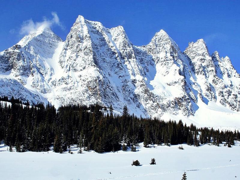 Paisagem de inverno no Parque Nacional em Jasper