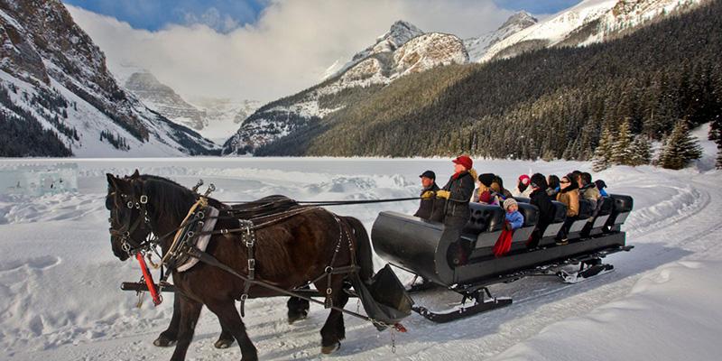 Cenário do passeio romântico de trenó em Banff