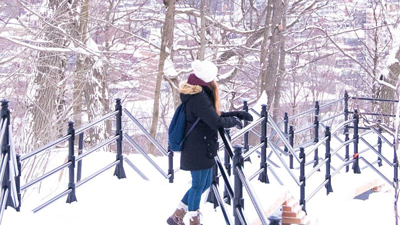 Excursão de inverno em Montreal